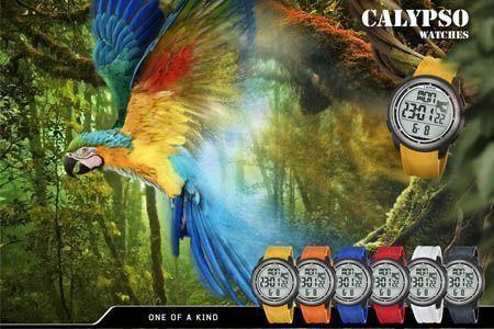 Guía de relojes Calypso